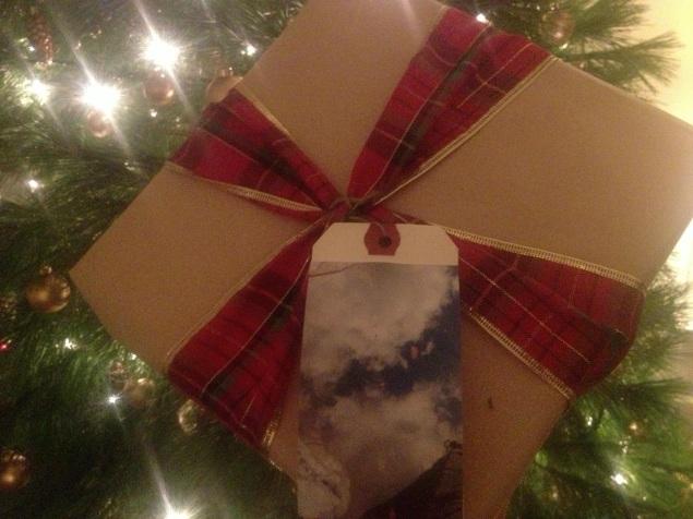 Plain and simple: Brown kraft paper, tartan ribbon, DIY photograph luggage tag