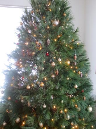 Our Glorious White Pine